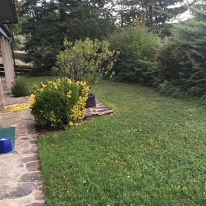 Garten-vorher